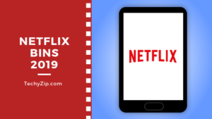 featured image for netflix bins article